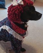 Raggedy Ann Dog Homemade Costume