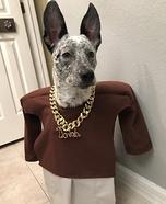 Rap DOG Homemade Costume