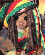 Rasta Ginger Homemade Costume