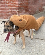 Rattlesnake Dog Homemade Costume