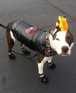 Rebel Biker Dog Homemade Costume
