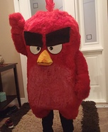 Red Bird Homemade Costume