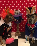 Red Queen and Rabbit Dogs Homemade Costume