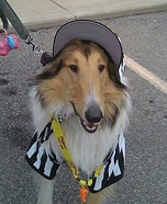 Referee Dog Homemade Costume