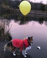 Reversed Georgie Dog Homemade Costume