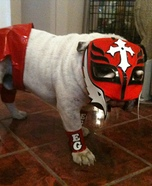 Rey Mysterio Costume for Dogs