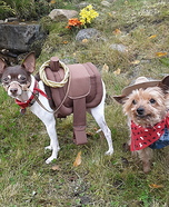 Ride 'em Cowgirl Dogs Homemade Costume
