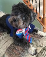 Riley for President Homemade Costume