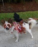 Homemade Roadkill Zombie Dog Costume