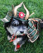 Creative costume ideas for dogs: Rosco The Last Dog Samurai