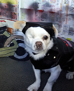 Ruff Riders Costume for Dogs