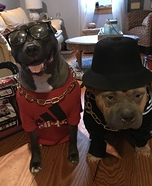 Run-DMC Dog Homemade Costume