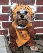 Sadie the Ewok Homemade Costume