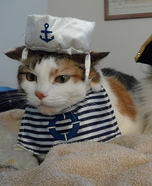 Sailor and Pirate Cats Homemade Costume