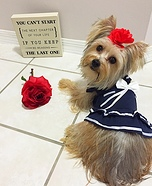 Sailor Dog Homemade Costume