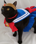 Sailor Mewn Homemade Costume