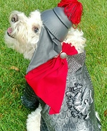 Saint George the Dragon Slayer Dog Homemade Costume