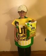 Salt and Vinegar Chips Homemade Costume