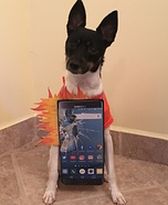 Samsung Galaxy Note 7 Dog Homemade Costume