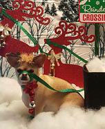 Santa' New Rudolph Homemade Costume