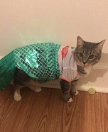 Sassy Mermaid Cat Homemade Costume