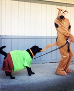 Costume ideas for pets and their owners: Scooby and Shaggy