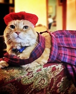 Scottish Laddie Cat Homemade Costume