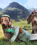 Scottish Pipe & Drum Band Dogs Homemade Costume