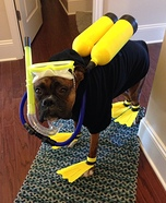 Scuba Diver Homemade Costume