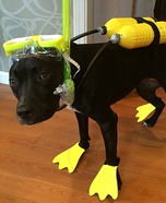Scuba Dog Homemade Costume