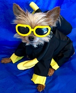 DIY Scuba Dog Costume
