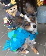 Seafood Dog Homemade Costume