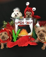 Seafood Gumbo Soup Homemade Costume