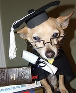 Senior Graduate Homemade Costume