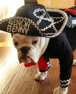 Senor Benny the Mariachi Homemade Costume