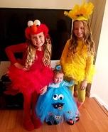Sesame Street Homemade Costume