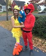 Sesame Street Crew Homemade Costume