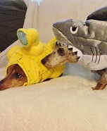Shark Attack Dog's Costume