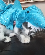 Shark Kitten Costume