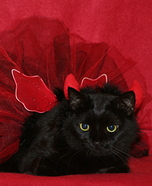 She Devil Cat Halloween Costume