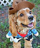 DIY Sheriff Dog Costume