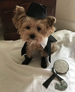 Sherlock Holmes Dog Homemade Costume