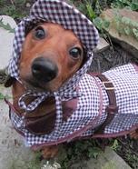 Sherlock Hounds Costume