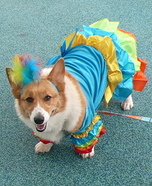 Showgirl Dog Costume