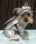 Sir Lexington the Grumpy Knight Homemade Costume