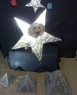 Sirius the Dog Star Homemade Costume