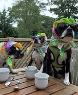 Dog Sisters Girl Time Costume