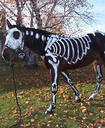 Skeleton Horse Halloween Costume