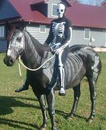 Skeletons Homemade Costume