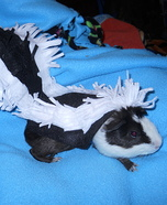 Skunk Costume for Pets